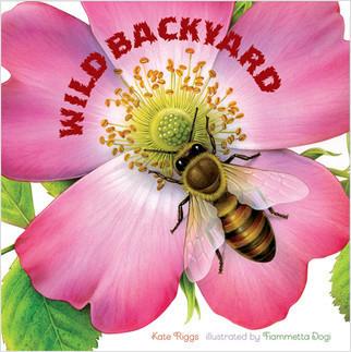 Cover: Wild Backyard (board book)