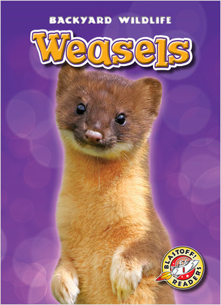 Cover: Weasels
