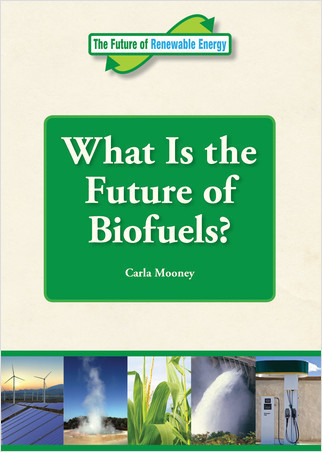 Cover: What Is the Future of Biofuels?