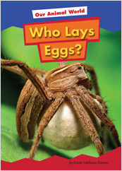 Cover: Who Lays Eggs?