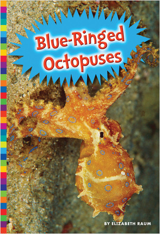 Cover: Blue-Ringed Octopuses