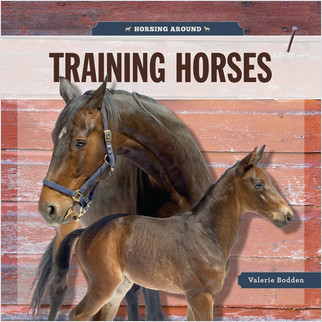 Cover: Training Horses