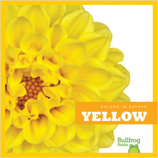 Cover: Yellow in Nature