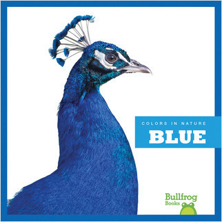 Cover: Blue in Nature