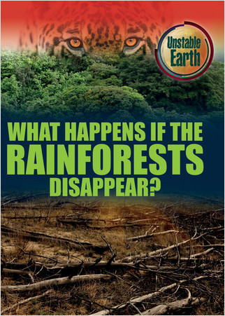 Cover: What Happens if the Rain Forests Disappear?