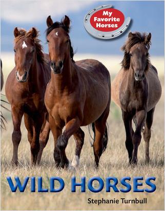 Cover: Wild Horses