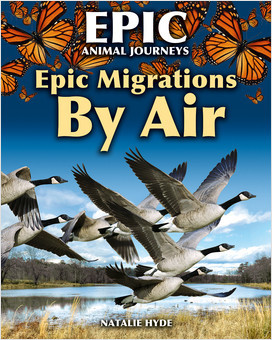 Cover: Epic Animal Journeys