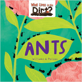 Cover: What lives in the dirt?