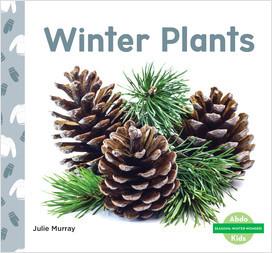 Cover: Winter Plants