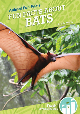 Cover: Animal Fun Facts