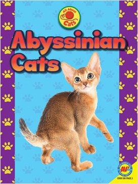 Cover: All About Cats