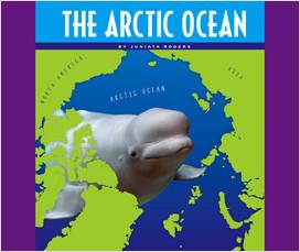 Cover: The Arctic Ocean