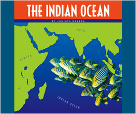 Cover: The Indian Ocean