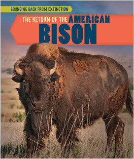 Cover: Bouncing Back from Extinction