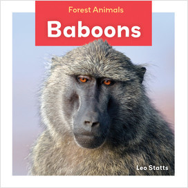 Cover: Forest Animals