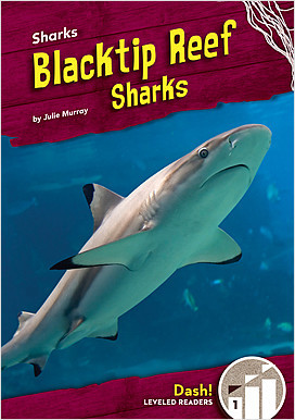 Cover: Blacktip Reef Sharks
