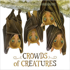 Cover: Crowds of Creatures (Board Book)