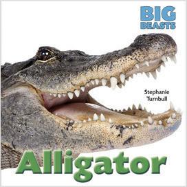 Cover: Big Beasts