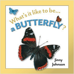 Cover: A Butterfly?