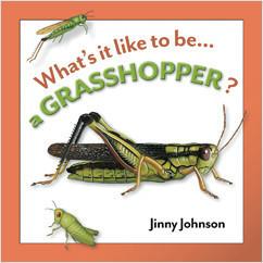 Cover: A Grasshopper?