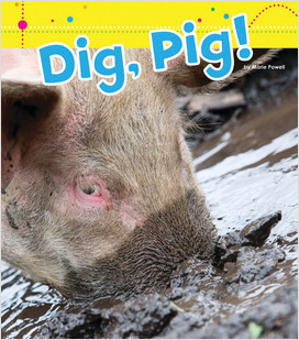 Cover: Dig, Pig!