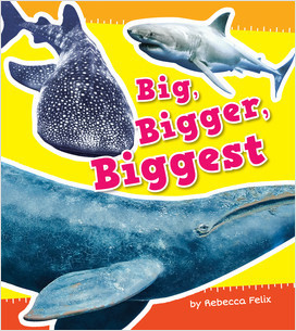 Cover: Size It Up