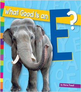 Cover: What Good Is an E?