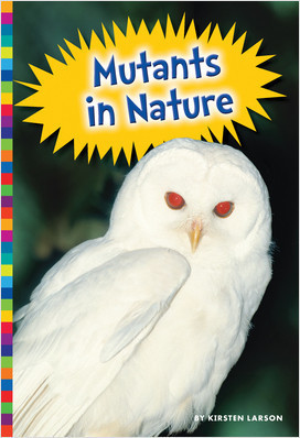 Cover: Freaky Nature