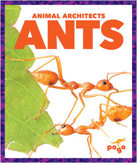 Cover: Animal Architects
