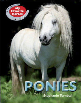 Cover: My Favorite Horses