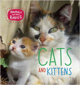 Cover: Cats and Kittens