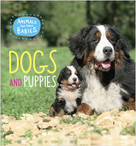 Cover: Dogs and Puppies