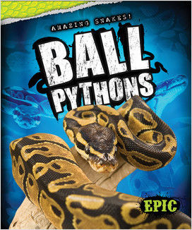 Cover: Amazing Snakes!