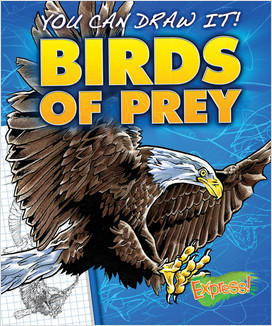 Cover: Birds of Prey