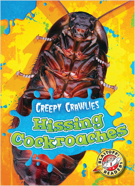 Cover: Hissing Cockroaches
