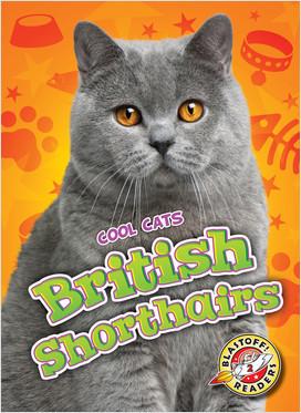 Cover: British Shorthairs