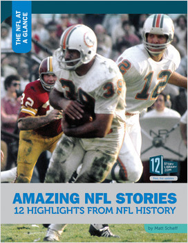 Cover: The NFL at a Glance