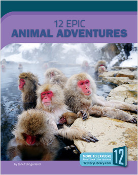 Cover: Epic Adventures
