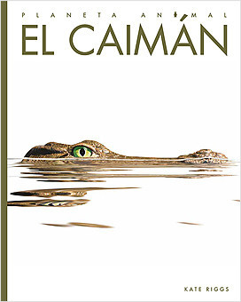 Cover: Planeta animal