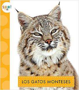 Cover: Los gatos monteses