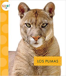 Cover: Los pumas