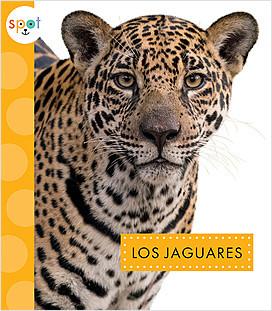 Cover: Los jaguares