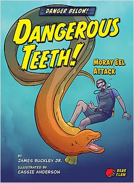 Cover: Danger Below!