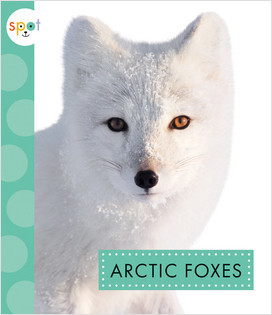 Cover: Spot Arctic Animals - Fall 2020