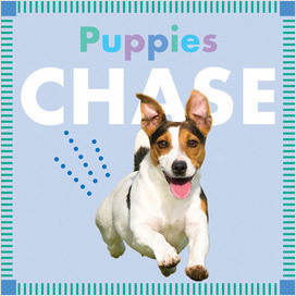 Cover: Puppies Chase