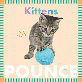 Cover: Kittens Pounce