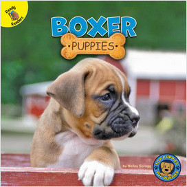 Cover: Top Puppies