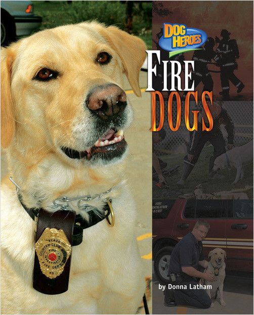 Cover: Fire Dogs
