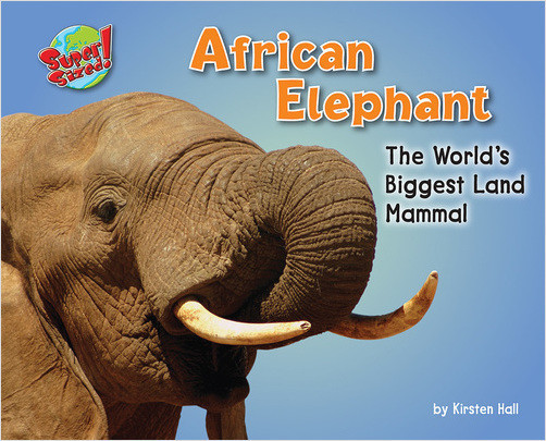 Cover: African Elephant