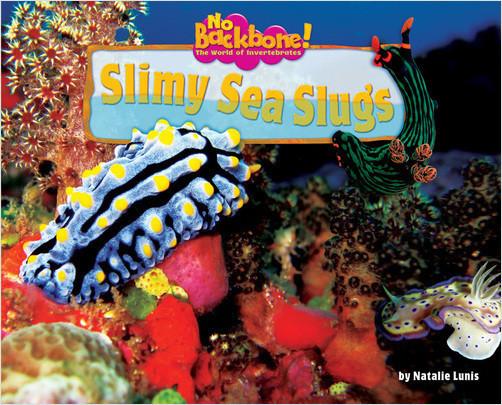 Cover: Slimy Sea Slugs